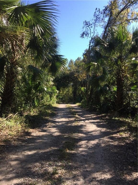 6881 County Road 330, Bushnell, FL 33513 (MLS #E2401002) :: Revolution Real Estate