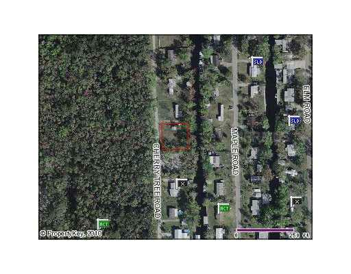 56320 Cherry Tree Road, Astor, FL 32102 (MLS #G4663639) :: Rabell Realty Group
