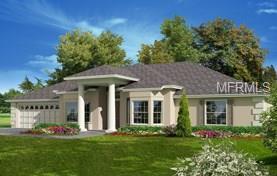 229 Two Lakes Lane, Eustis, FL 32726 (MLS #G4851812) :: Griffin Group