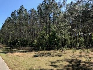 County Road 561, Clermont, FL 34711 (MLS #G4853145) :: Griffin Group