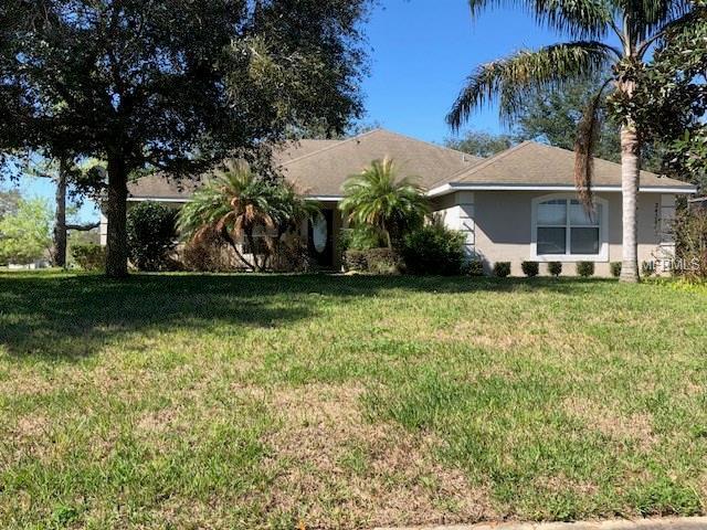 24251 Calusa Boulevard, Eustis, FL 32736 (MLS #G4853162) :: Cartwright Realty
