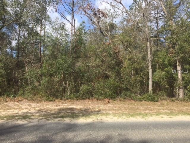 Kismet Road, Altoona, FL 32702 (MLS #G4854014) :: The Duncan Duo Team