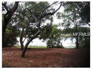 E Spring Lake Boulevard, Fruitland Park, FL 34731 (MLS #G4854591) :: The Lockhart Team