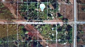 2750 W Yarbrough Road, Avon Park, FL 33825 (MLS #G5000414) :: Homepride Realty Services