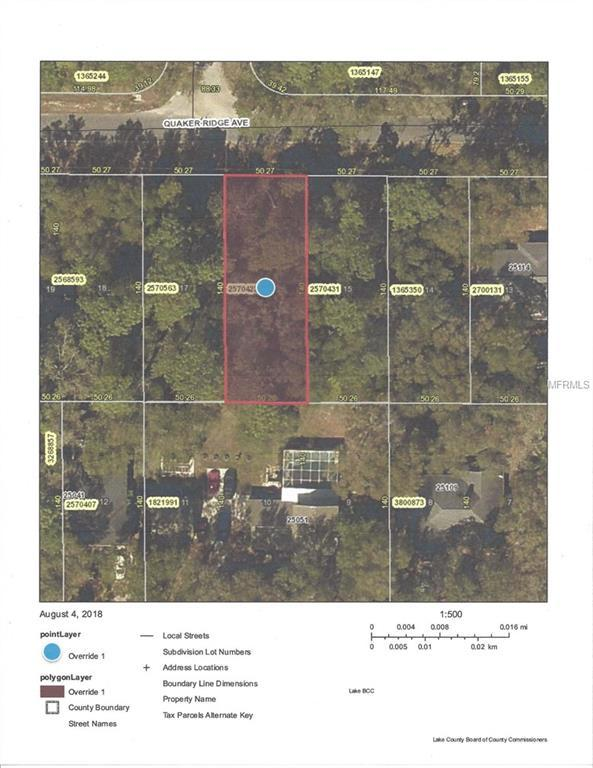 Quaker Ridge Avenue, Mount Plymouth, FL 32776 (MLS #G5004634) :: The Lockhart Team