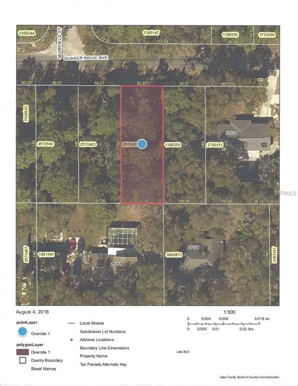Quaker Ridge Avenue, Mount Plymouth, FL 32776 (MLS #G5004636) :: The Lockhart Team
