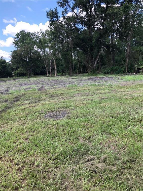 32314 Holopaw Trail, Sorrento, FL 32776 (MLS #G5004887) :: Griffin Group