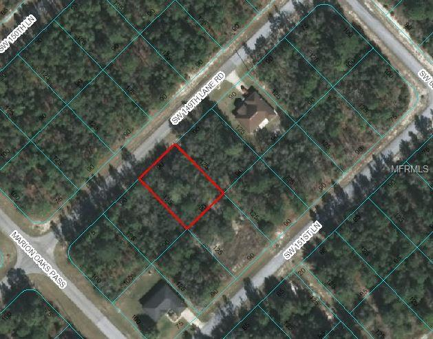 SW 149TH LANE Road, Ocala, FL 34473 (MLS #G5005488) :: Ideal Florida Real Estate