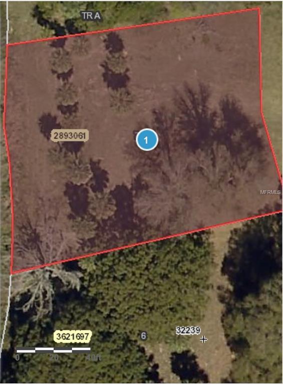 Amvets Way, Mount Dora, FL 32757 (MLS #G5006021) :: The Duncan Duo Team