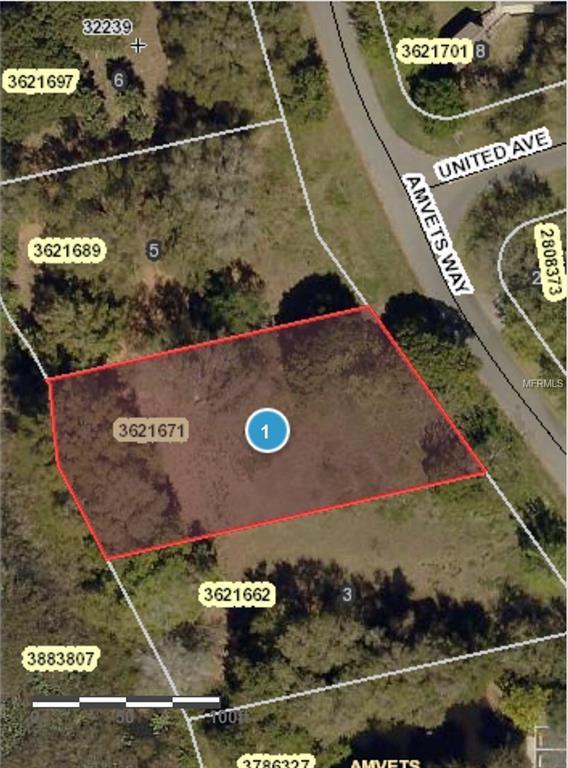 Amvets Way, Mount Dora, FL 32757 (MLS #G5006022) :: The Duncan Duo Team