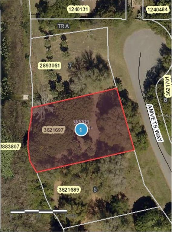 Amvets Way, Mount Dora, FL 32757 (MLS #G5006024) :: The Duncan Duo Team