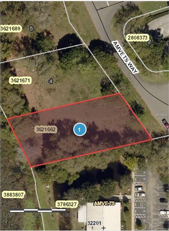 Amvets Way, Mount Dora, FL 32757 (MLS #G5006026) :: The Duncan Duo Team