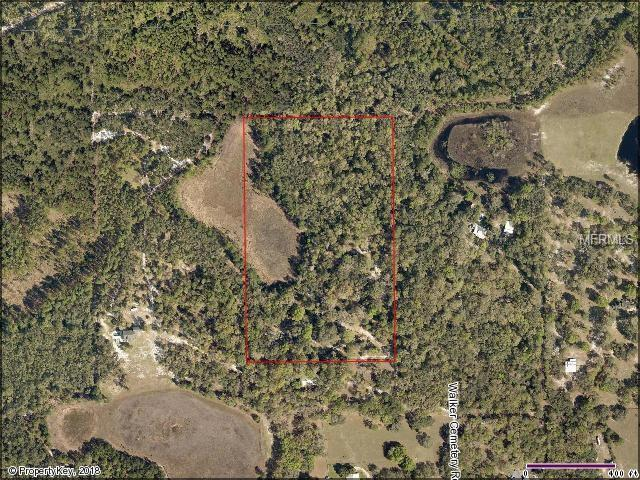 37549 Walker Cemetery Road, Eustis, FL 32736 (MLS #G5006322) :: The Duncan Duo Team