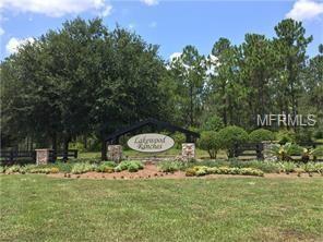 24212 Greenwood Crossing, Eustis, FL 32736 (MLS #G5006457) :: KELLER WILLIAMS CLASSIC VI