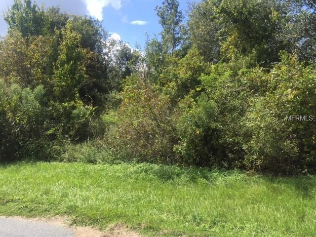 Green Swamp Road - Photo 1