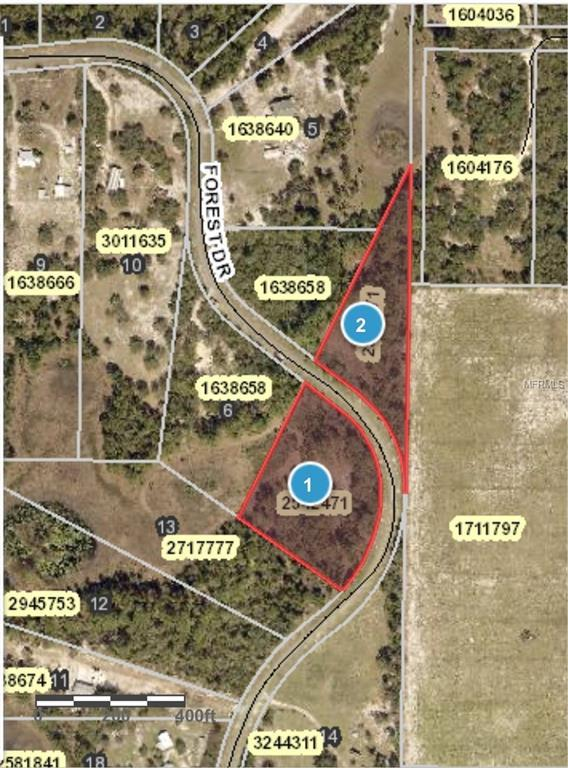 39925 Forest Drive, Eustis, FL 32736 (MLS #G5007536) :: Team Touchstone