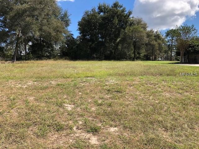 333 Woodland Trail, Lady Lake, FL 32159 (MLS #G5007544) :: The Duncan Duo Team