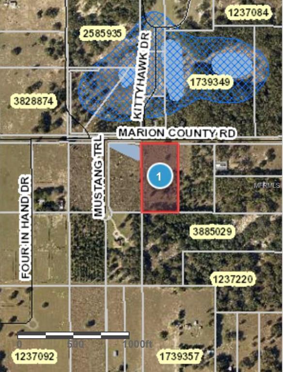 Marion County Road, Weirsdale, FL 32195 (MLS #G5010536) :: Lockhart & Walseth Team, Realtors