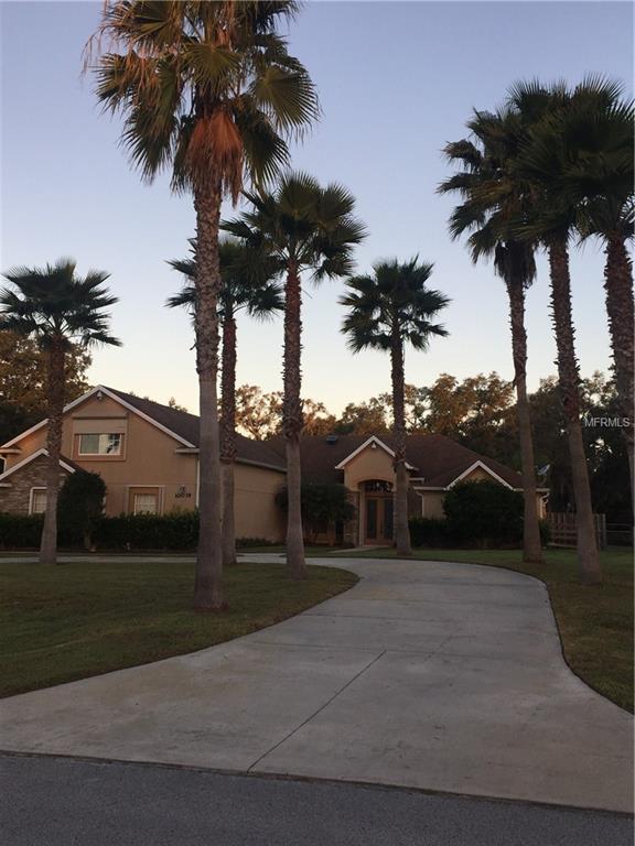 10039 Tween Waters Street, Clermont, FL 34715 (MLS #G5011066) :: Bustamante Real Estate