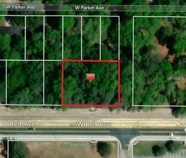 Cr 48 A/K/A W. Belt Avenue, Bushnell, FL 33513 (MLS #G5011563) :: The Duncan Duo Team