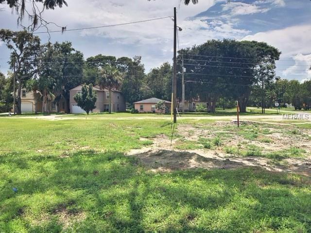 324 W Oakland Avenue, Oakland, FL 34760 (MLS #G5011644) :: Zarghami Group