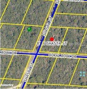 8315 Shasta Street, Webster, FL 33597 (MLS #G5012147) :: Griffin Group