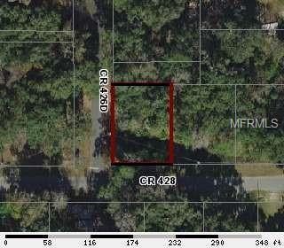 2575 County Road 426D, Lake Panasoffkee, FL 33538 (MLS #G5014941) :: The Duncan Duo Team