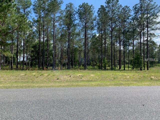 35151 Pinegate Trail, Eustis, FL 32736 (MLS #G5015289) :: The Duncan Duo Team