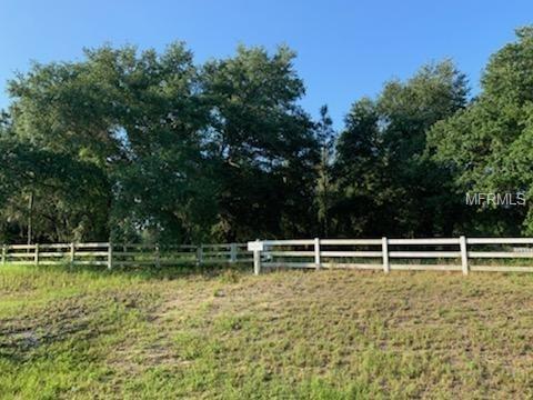 Ranch Club, Groveland, FL 34736 (MLS #G5015848) :: Team Bohannon Keller Williams, Tampa Properties