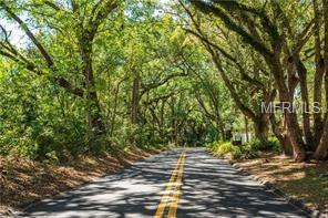 Old Eustis Road, Mount Dora, FL 32757 (MLS #G5016485) :: The Duncan Duo Team