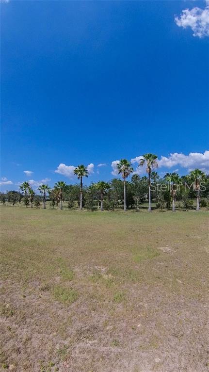 Royal Palm Drive, Groveland, FL 34736 (MLS #G5016573) :: The Duncan Duo Team