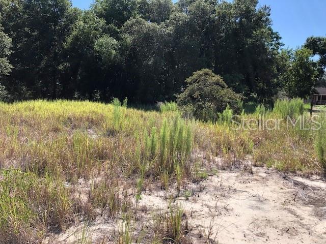 0 SE 108TH TERR Road, Ocala, FL 34472 (MLS #G5017465) :: Team Bohannon Keller Williams, Tampa Properties