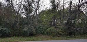 Harbar Oaks Drive, Montverde, FL 34756 (MLS #G5018102) :: Team Bohannon Keller Williams, Tampa Properties