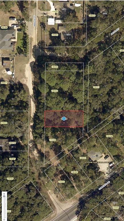 Paducah Street, Mount Plymouth, FL 32776 (MLS #G5018973) :: Charles Rutenberg Realty