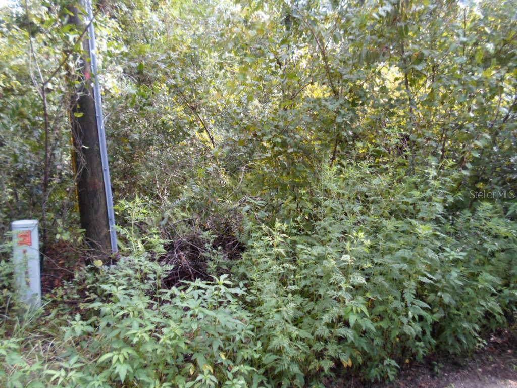 Woodside Drive - Photo 1