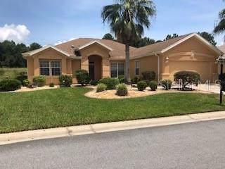13285 SE 97TH TERRACE Road, Summerfield, FL 34491 (MLS #G5019301) :: Armel Real Estate