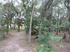 Se 175Th Pl, Umatilla, FL 32784 (MLS #G5019608) :: Bustamante Real Estate