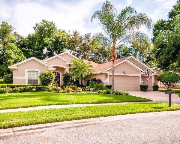 6041 Brightmoor Court, Mount Dora, FL 32757 (MLS #G5019649) :: Cartwright Realty