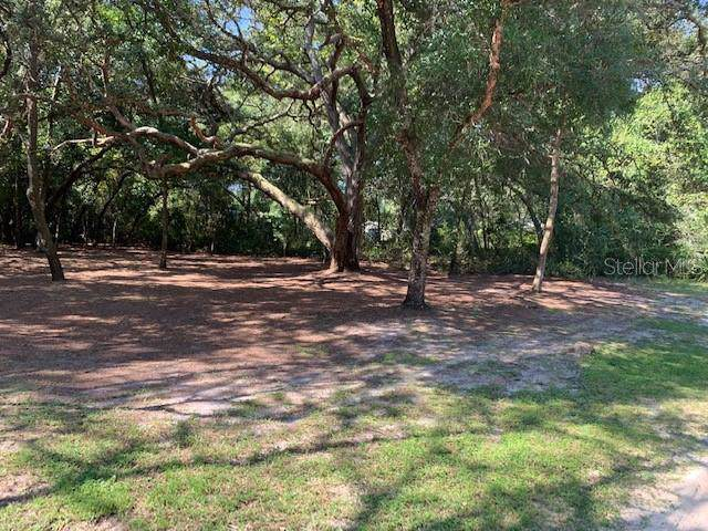 Illicium Lane, Lady Lake, FL 32159 (MLS #G5020316) :: Mark and Joni Coulter | Better Homes and Gardens
