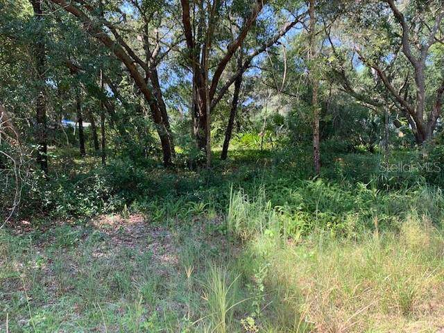 Illicium Lane, Lady Lake, FL 32159 (MLS #G5020317) :: GO Realty
