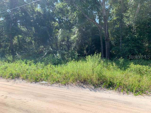Elm Street, Lady Lake, FL 32159 (MLS #G5020319) :: GO Realty