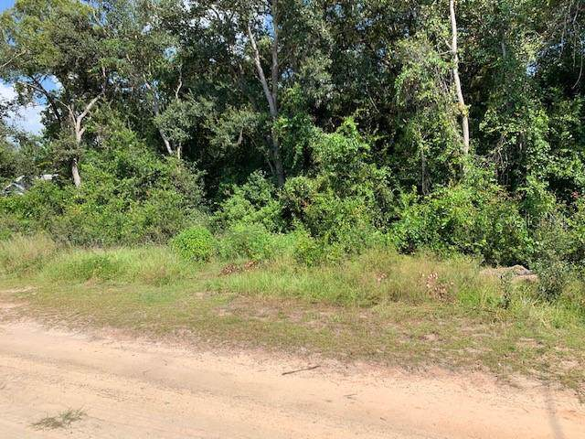 Calamondin Street, Lady Lake, FL 32159 (MLS #G5020322) :: GO Realty