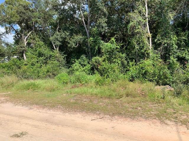 Calamondin Street, Lady Lake, FL 32159 (MLS #G5020322) :: The Duncan Duo Team