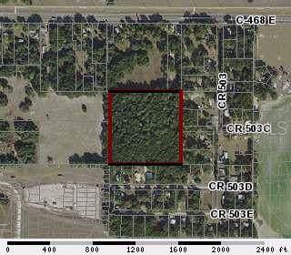 5302 NE 28TH Lane, Wildwood, FL 34785 (MLS #G5020433) :: Griffin Group
