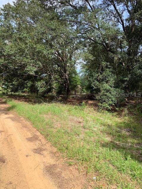 102 Cottonwood Drive, Hawthorne, FL 32640 (MLS #G5020434) :: Cartwright Realty