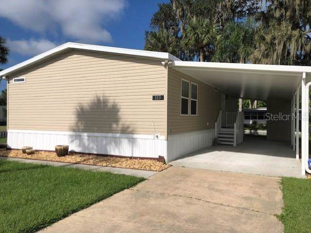 113 Palm Drive, Eustis, FL 32726 (MLS #G5020442) :: Team Bohannon Keller Williams, Tampa Properties