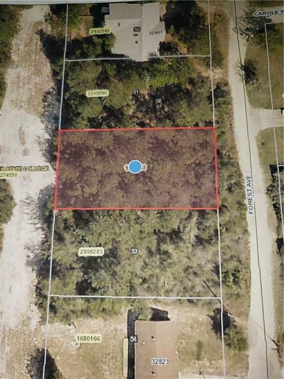 Forest Avenue, Leesburg, FL 34788 (MLS #G5020508) :: Team Bohannon Keller Williams, Tampa Properties