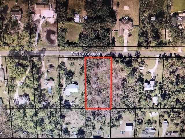 Tarragon Street, Cocoa, FL 32926 (MLS #G5021327) :: The Light Team
