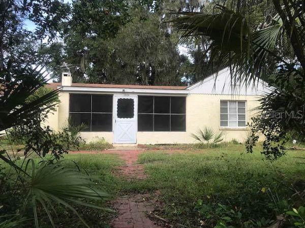 1205 E 2ND Avenue, Mount Dora, FL 32757 (MLS #G5021380) :: Baird Realty Group