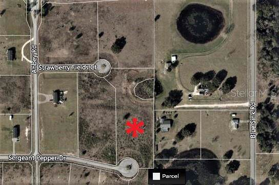 Address Not Published, Howey in the Hills, FL 34737 (MLS #G5021608) :: The Light Team